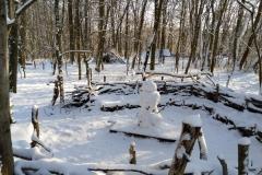 Waldsofa-im-Winter